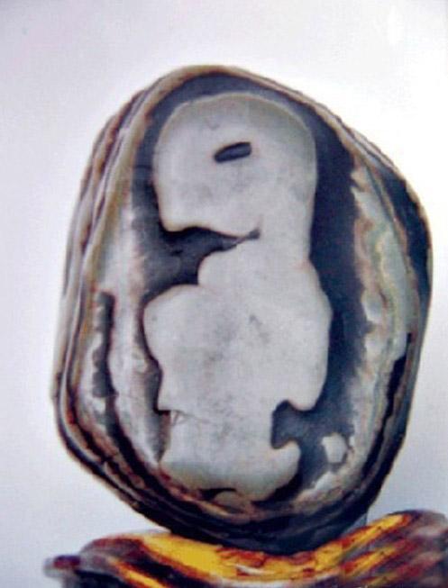 褶皱纹理素材石头